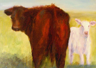 Livestock portrait of a cow and calf